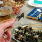 Barnacles for Dinner, Spain