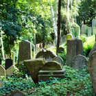 Jewish Cemetery, Trebic, Czech Republic